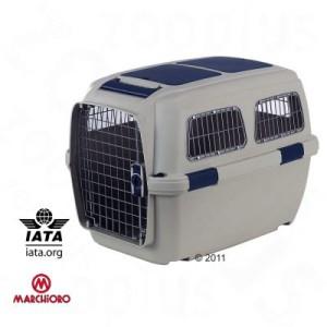 IATA Flugbox für Yorkshire Terrier