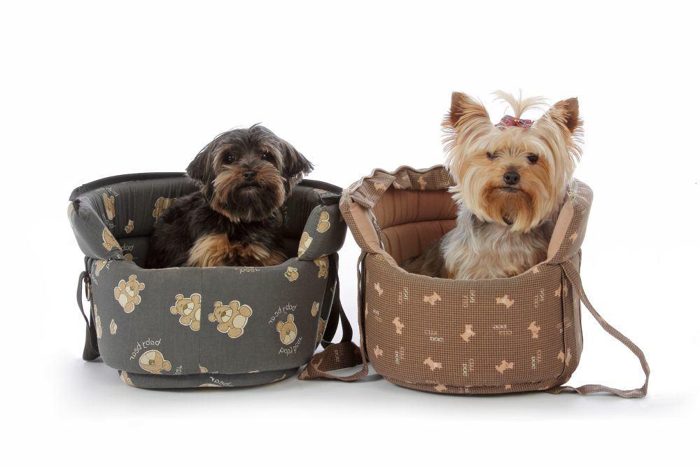 Tragetasche für Treppen Yorkshire Terrier