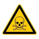 Giftstoffe im Haushalt - Yorkshire Terrier