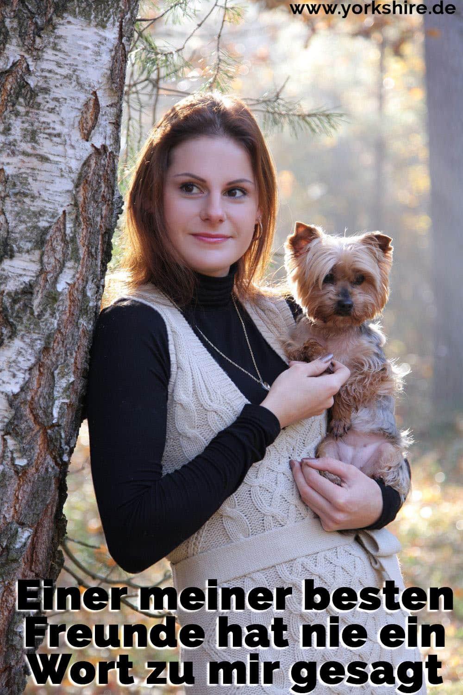 Junge Frau hält einen Yorkshire Terrier im Arm. Bild im Wald.